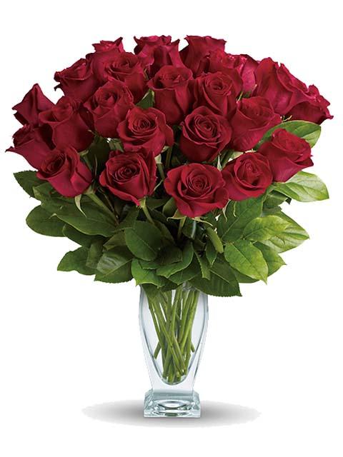 24 rose rosse medie per funerale