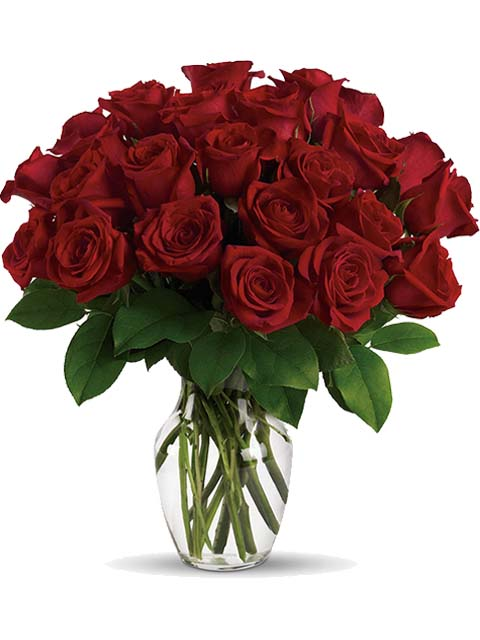 24 roselline rosse per funerale