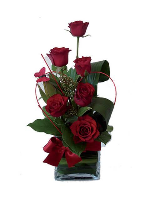 6 rose rosse
